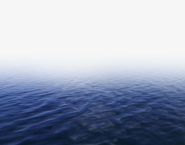 Water Png And Psd Dslr Background Images Tree Photoshop Background