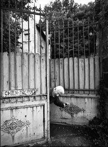 """"""" Ugo Mulas.Circus Calder"""" Kunst Meran, fino al 18-05-2014"""