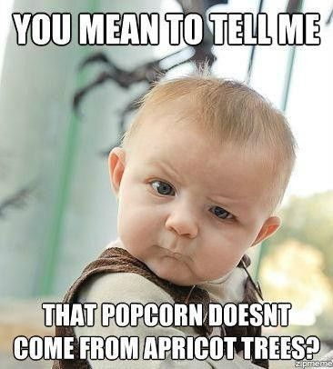 That pivotal moment when you find out that popcorn doesn't come from apricot trees. Hahha. Hilarious because this is one of my moms favorite songs.