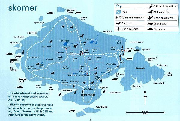 Google Image Result for http://www.welshwildlife.org/wp-content/uploads/2011/10/skomer-map-from-guide-book.jpg