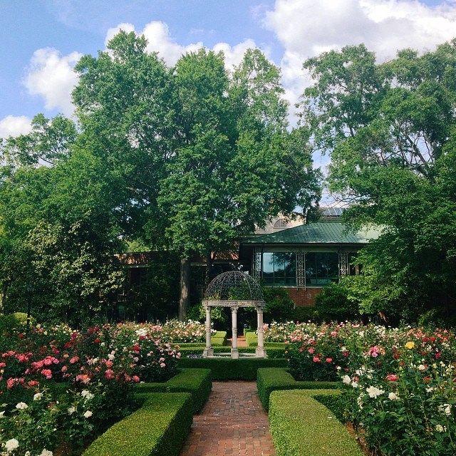 27 best Janie E. Furman Rose Garden images on Pinterest | Colleges ...