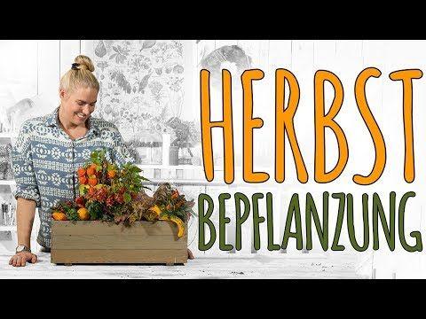 HERBSTBEPFLANZUNG – EIN SCHÖNES FARBSPIEL IN ROT ORANGE TÖNEN – DIY – YouTube – Manuela Graf
