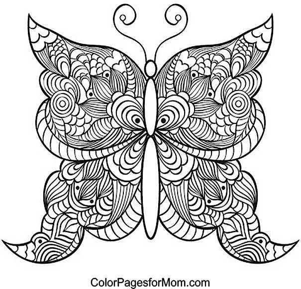butterfly adult colouring page 21
