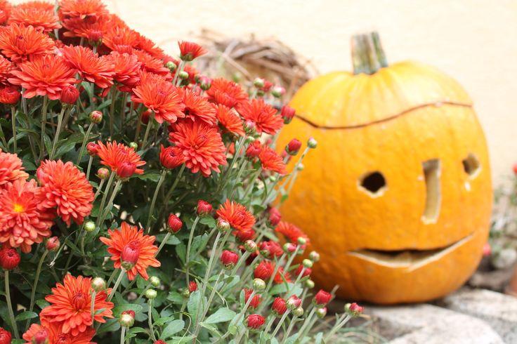 Aká by to bola jeseň bez dýň a tekvíc..a chryzantém !