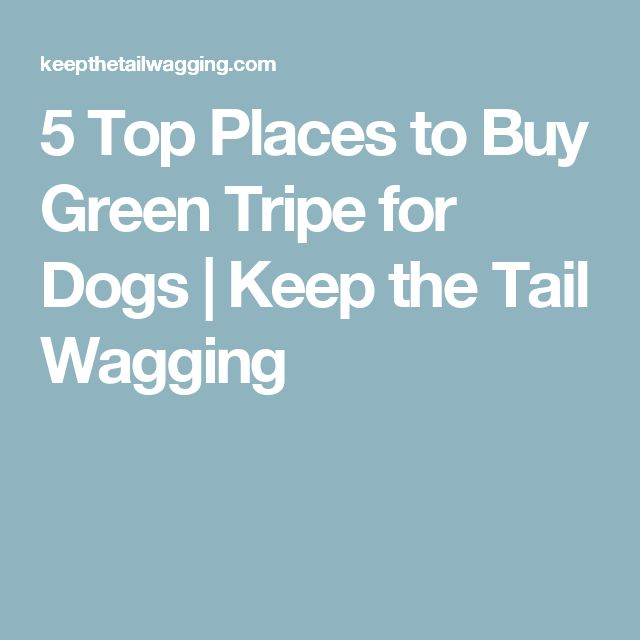 5 Top Places to Buy Green Tripe for Dogs | Keep the Tail Wagging