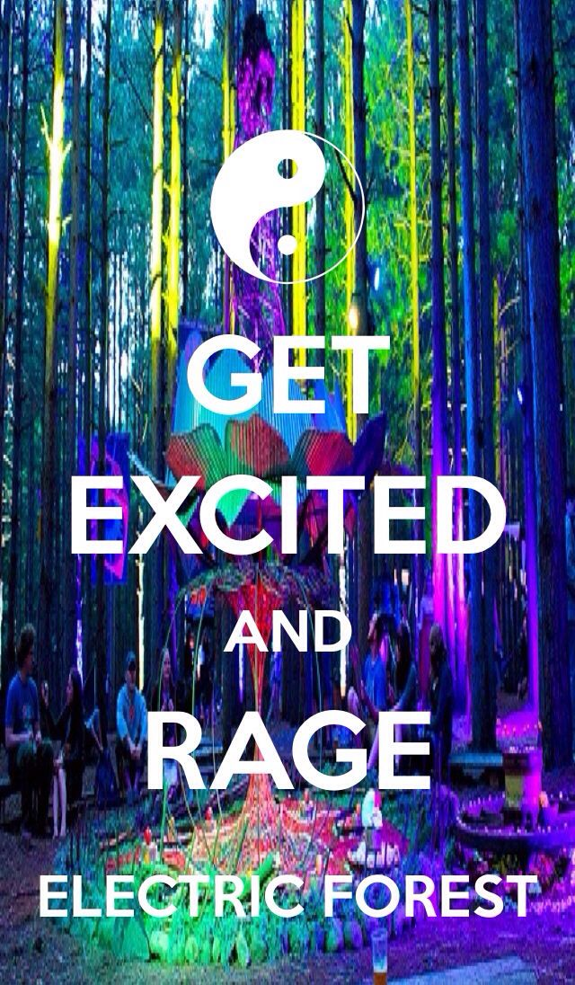 This shit says it all! #ElectricForest #EF2014 - Bewild.com