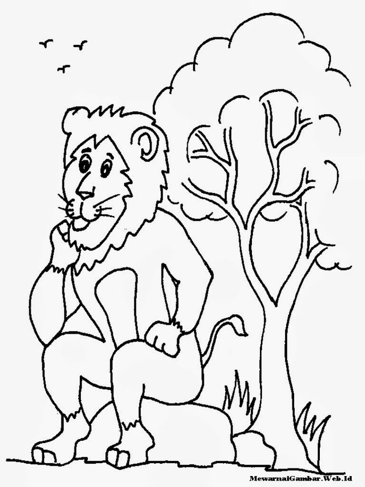 1000+ images about coloring sheet on Pinterest  1000+ images ab...
