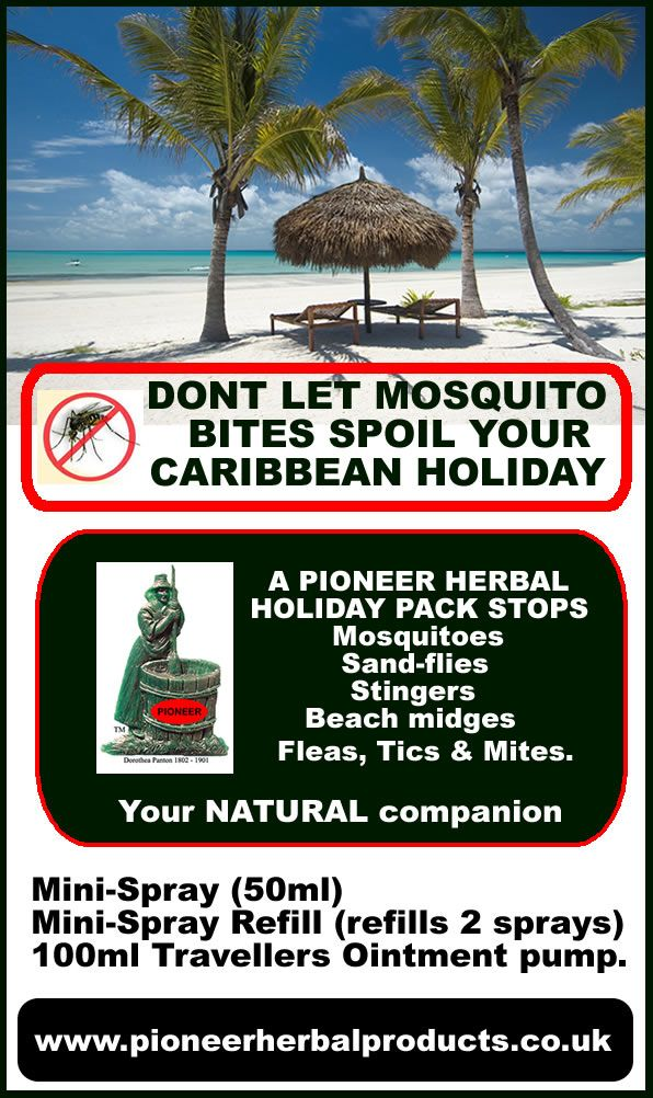 Equine Canine mites midges insect control wound care sweet itch & WLD - mosquitoes insects holidays