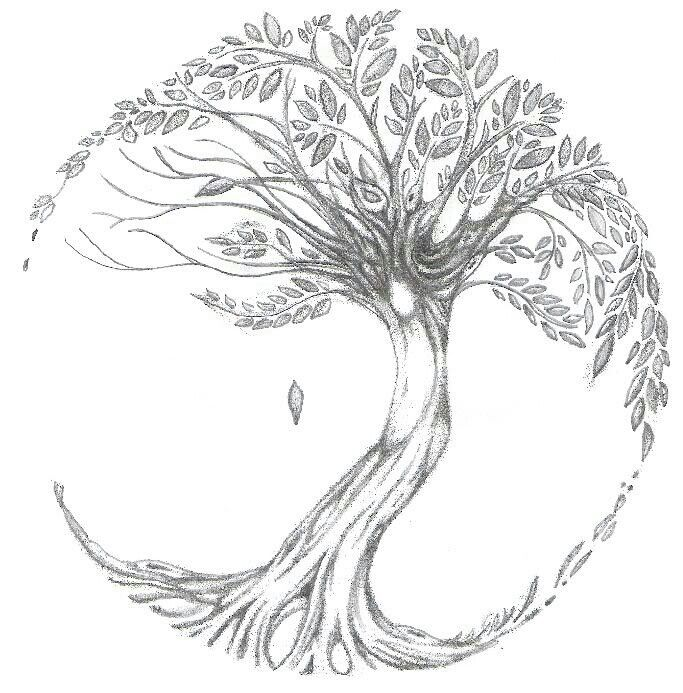 Drawn tree of life