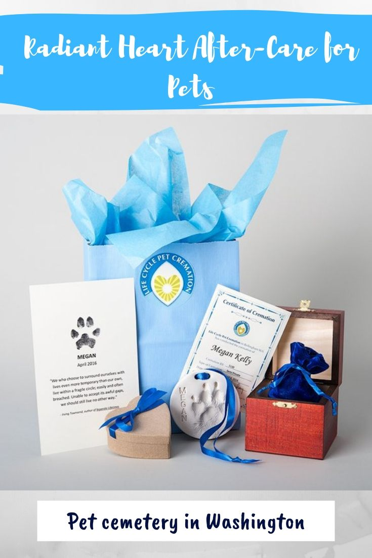 Pet Cemetery Radiant Heart After Care For Pets Pet Cemetery Pets Pet News