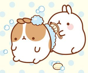 in collection: Molang