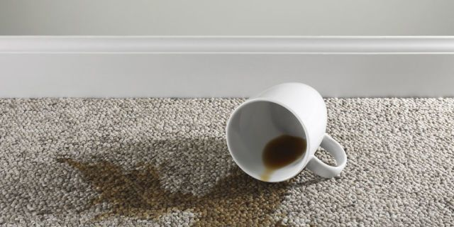8 of the Most Toxic Items You Have in Your Home: CarpetsCarpets