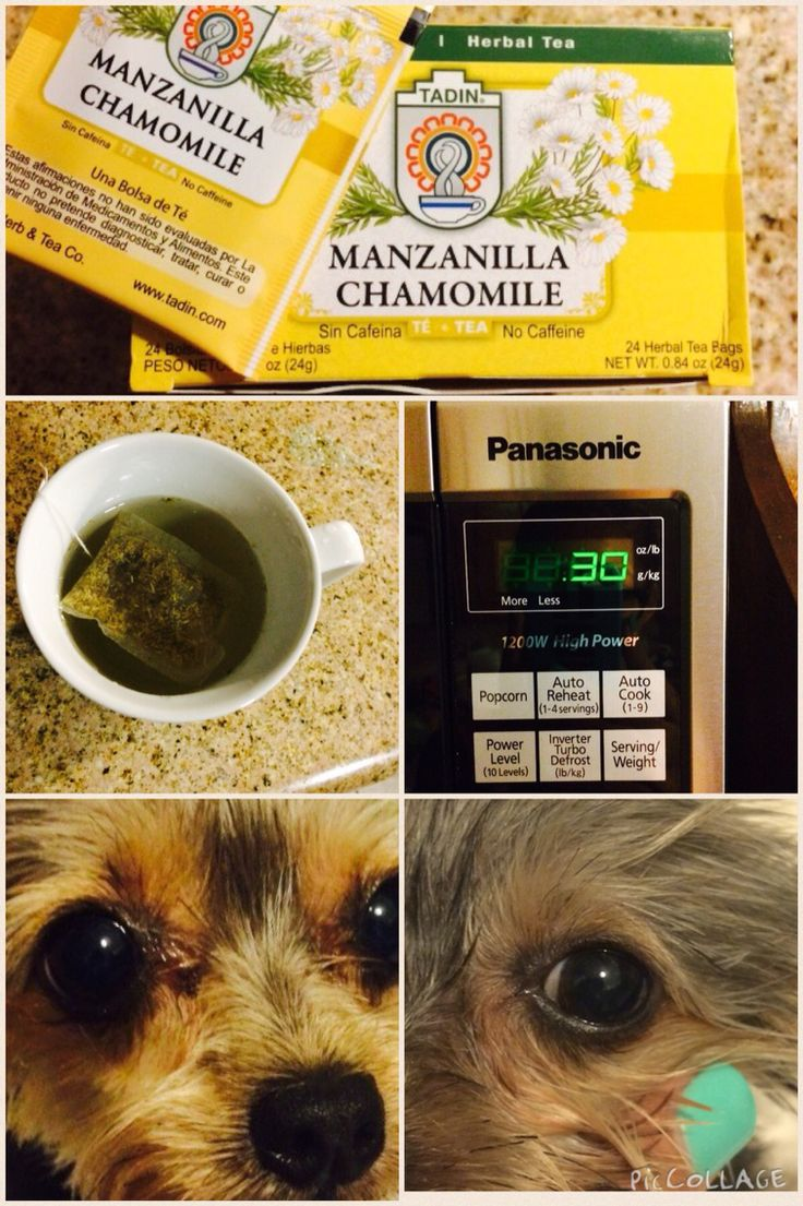 How take out the eye boogers in your dogs eyes works best is u use daily