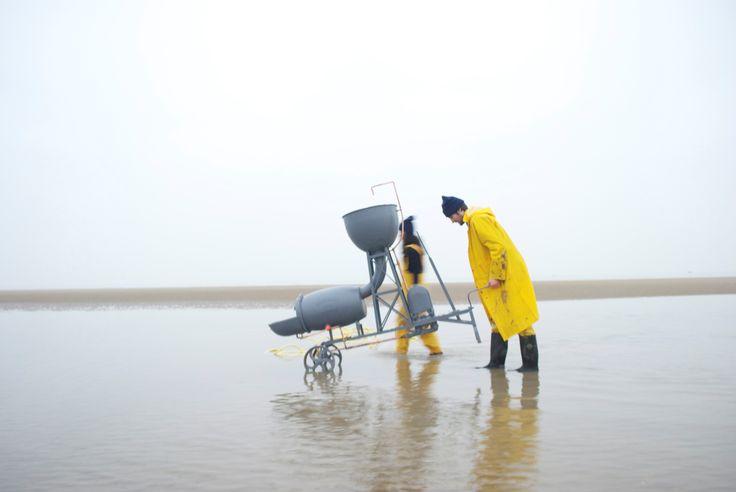 BIO Gold Medal and BIO Green Award  Sea Chair. Design: Studio Swine and Kieren Jones, co-authors: Azusa Murakami, Alexander Groves, Kieren Jones, 2012 (photo: designer's archive)