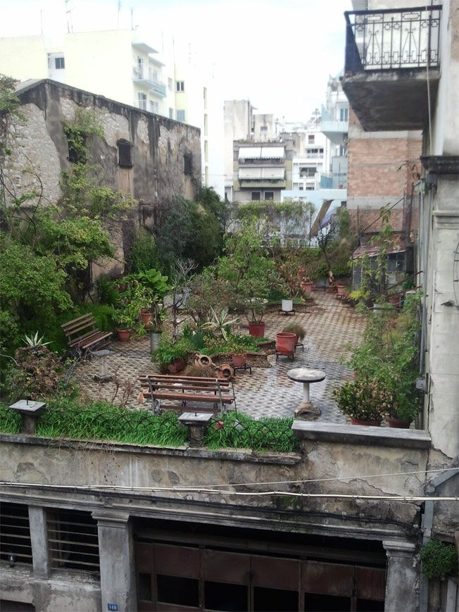 Hidden garden atop a derelict building at the corner of Filopoimenos and Riga Ferraiou streets in Patras, West Greece.