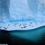 fondos-de-escritorio-cristianos-livng-on-ice_1649_1024x768-150x150