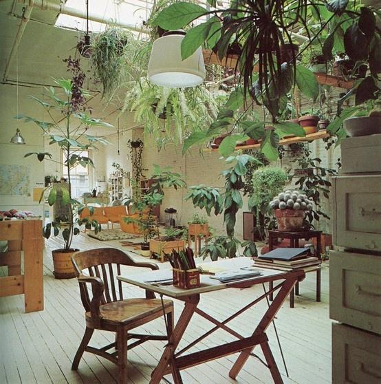 werkkamer met hangende planten
