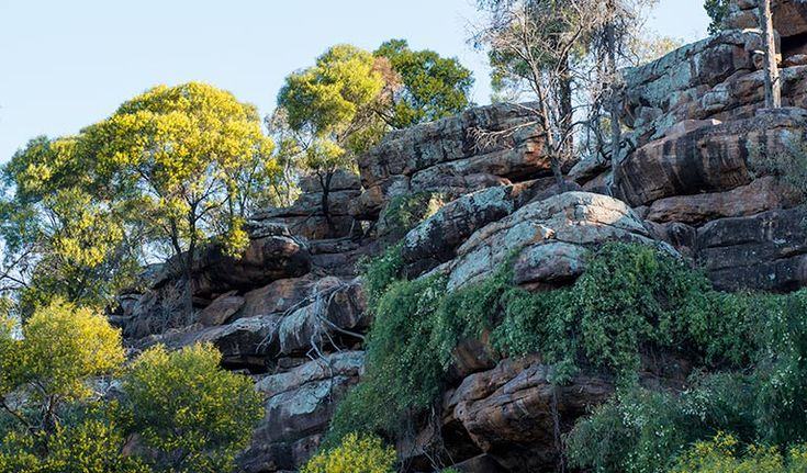 Cocoparra National Park. Photo: John Spencer | With its dramatic scenic views, Cocoparra National Park is fabulous for bushwalking and birdwatching, and within a half hour drive of Griffith in the Riverina.