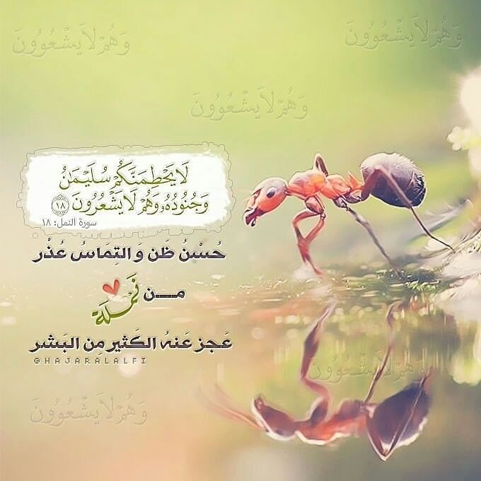 افهم ايه حسن الظن Islam Marriage Marriage Pictures