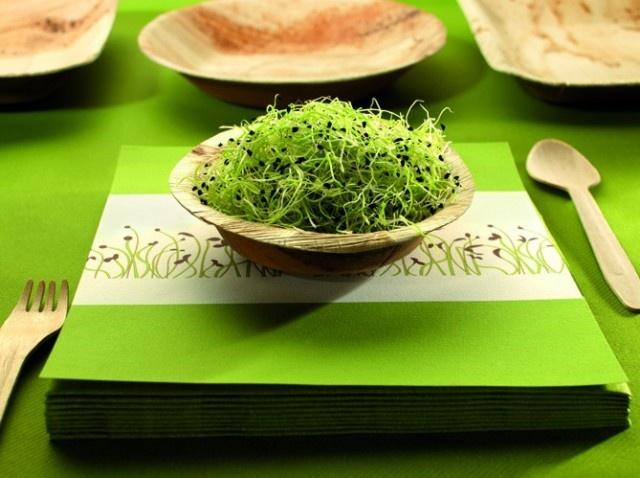 Une déco de table verte http://www.maison-deco.com/cuisine/decoration-de-table/Une-deco-de-table-ecolo