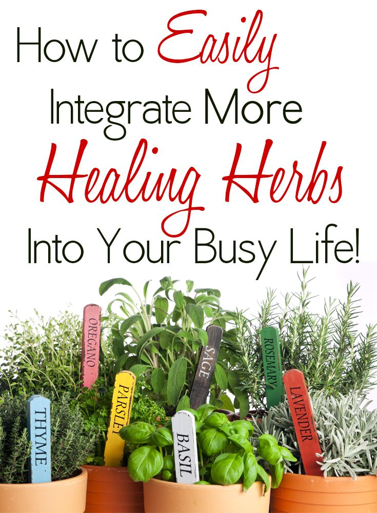 DIY home herbal remedies for your health and healing