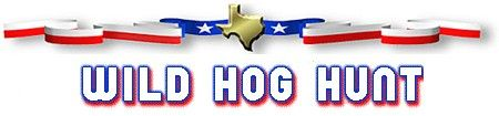 Home - Hunting Ranches in Texas   TX Wild Hog & Boar Hunts