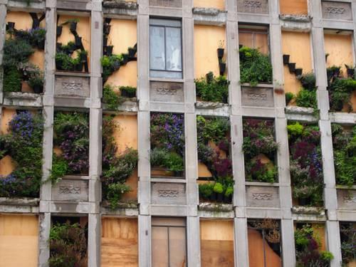 Reconstruction Rotterdam - vertical garden