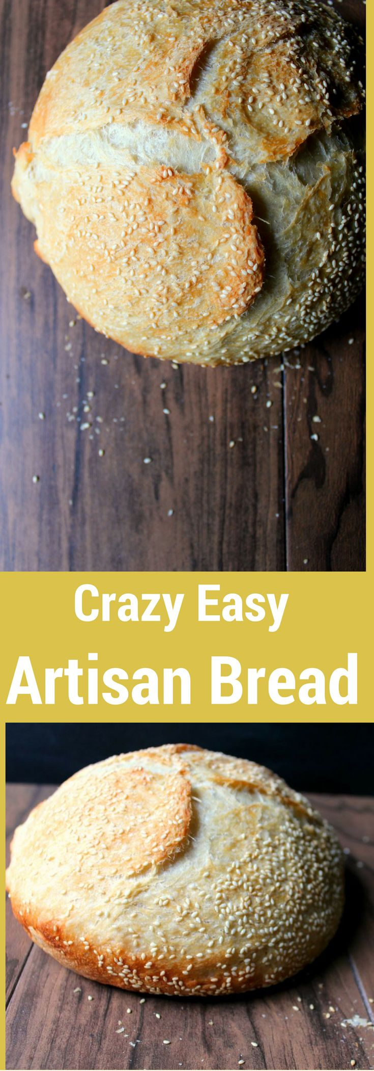 This Artisan Bread is INSANELY good and INSANELY EASY!