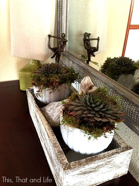 DIY Pallet Box with succulents
