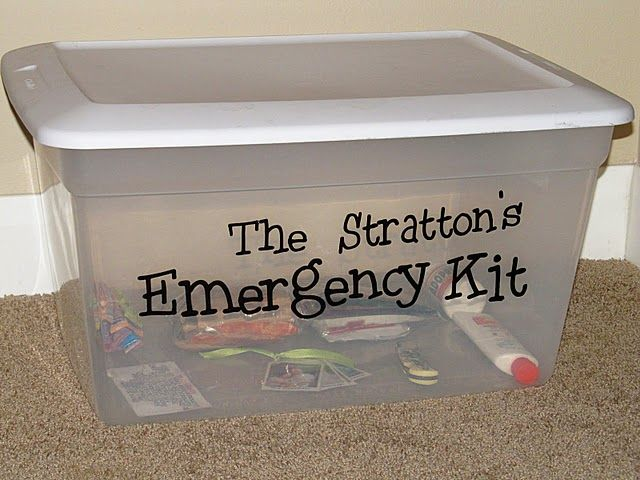 Family Emergency Kit (this one is still under construction, but the blog has more info on it.)  I would also add pet food and supplies.
