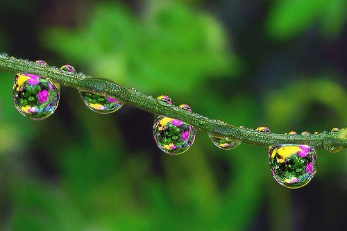 waterdrop paint balls