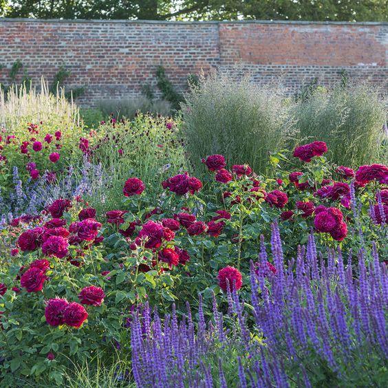 Fantastic Garden Path And Border Idea Садовые Идеи 400 x 300