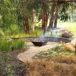 Pruning Australian native plants | GardenDrum