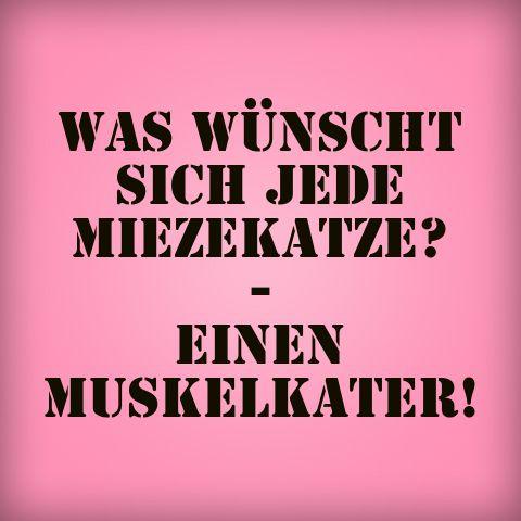 Muskelkater können auch für was gut sein ;-) Was wünscht sich jede Miezekatze? #quote