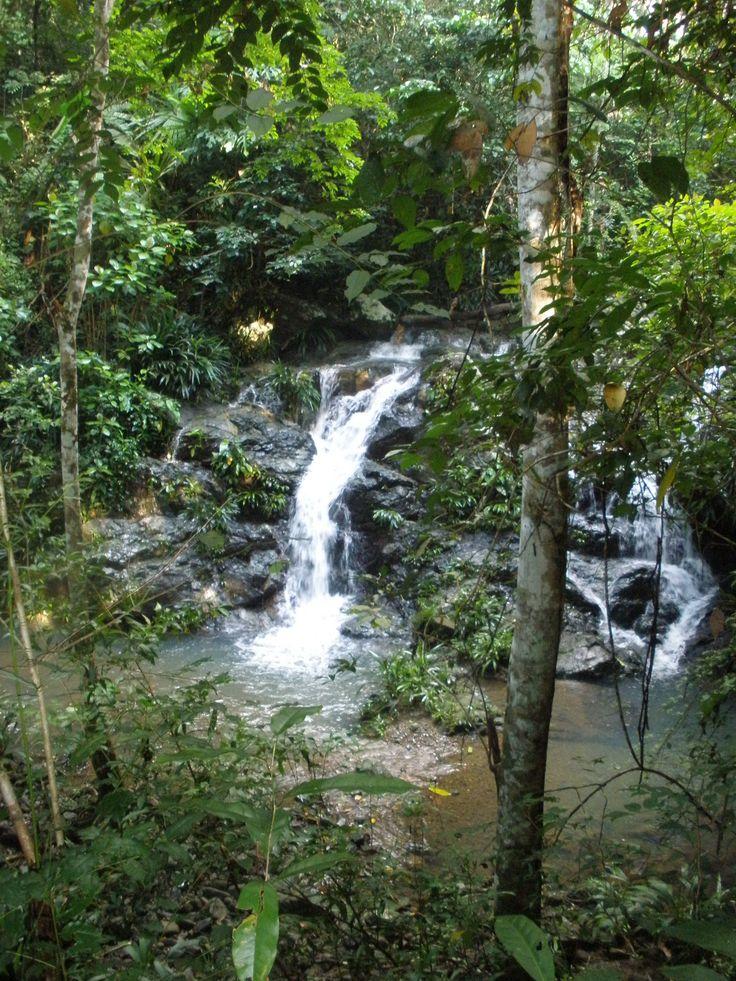 Little waterfall nearby Pintupo Community (Guna Yala ethnic group), at Bayano Lake, Panama... More info at: https://www.google.com/search?q=Pintupo+Community&oq=Pintupo+Community&aqs=chrome..69i57.9430j0j4&sourceid=chrome&espv=210&es_sm=93&ie=UTF-8#q=Pintupo+Kuna+Yala+Community+Bayano+Lake&spell=1