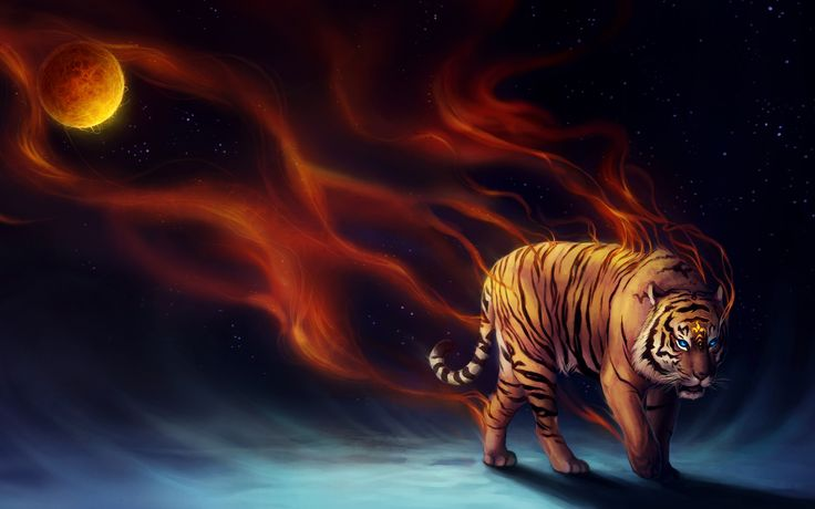 Powerful Tiger Background HD http ...