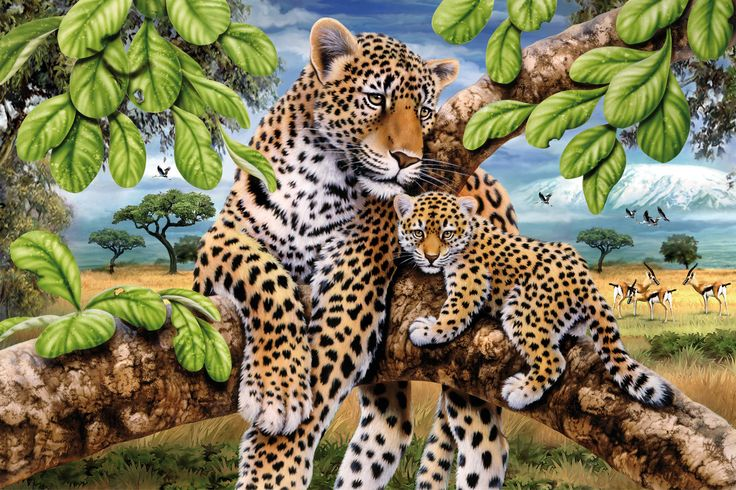 puzzle-adulti---leopard-cu-pui-500-piese_1_fullsize.jpg (1890×1260)
