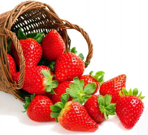 Everbearing Strawberry 50 Bare Root Plants - Fruit Spring, Summer & Fall
