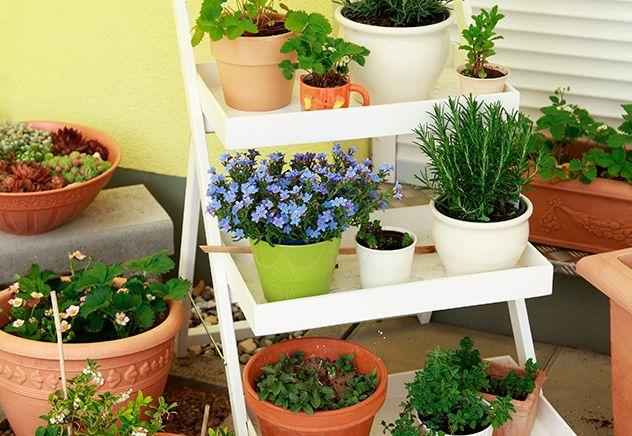 Decoração da varanda e jardim Cavalete para os vasos Ideias para