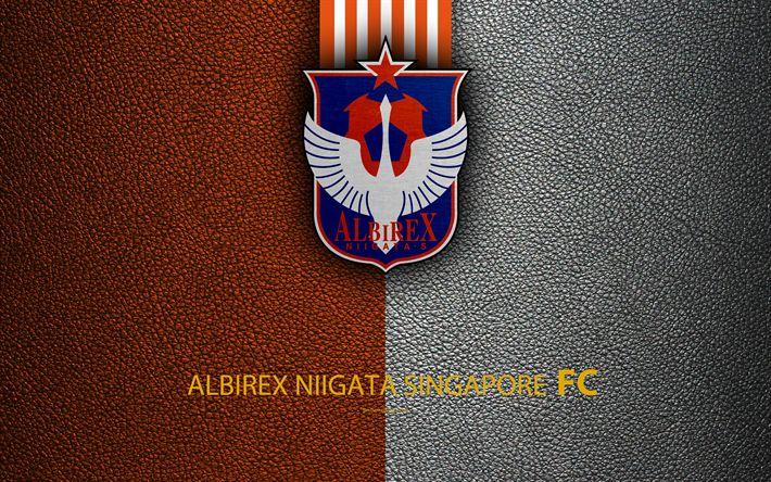 Download wallpapers Albirex Niigata Singapore FC, 4k, Singapore Football Club, logo, leather texture, football, Singapore Football Championships