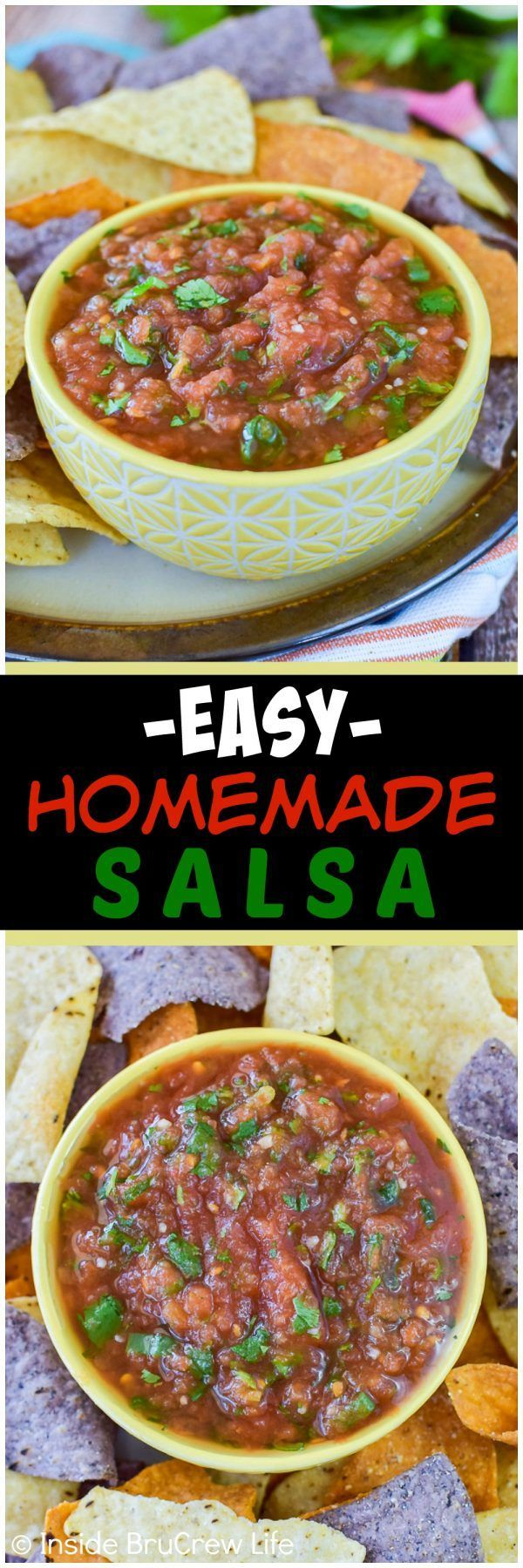 Easy Homemade Salsa - use onions, cilantro, and canned tomatoes for the best salsa!  Great dip recipe for chips or adding to dinners!