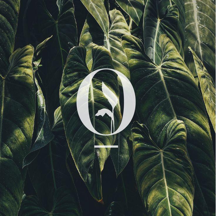 Icon design for Interior Landscapes. Monogram. Logo design.