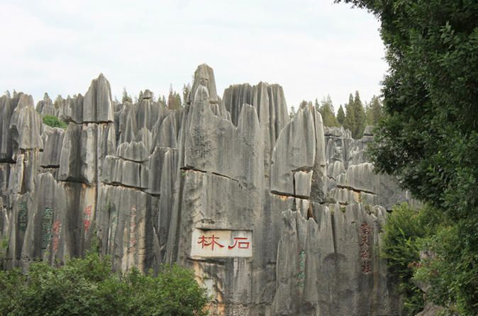 Stone Forest Private Day Tour Explore Stone Forest, a UNESCO World Heritage Site, on this 8-hour tour. Your guide will lead you through the eight parts of the forest and tell you about the scenic spots. Enjoy lunch as well as hotel pickup and drop-off included.You will be picked up at your downtown Kunming hotel by your guide and driver at approximately 8am. Take a private, air-conditioned vehicle to Stone Forest, a UNESCO World Heritage Site.Your guide will lead you through t...