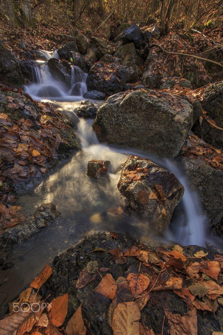 Autumn in Val Trebbia - null