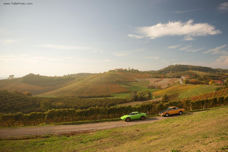 Just Because: Watch This Lancia Stratos Duel With A Fulvia | Petrolicious