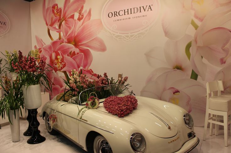 Amazing flores with ... a nice car ☺