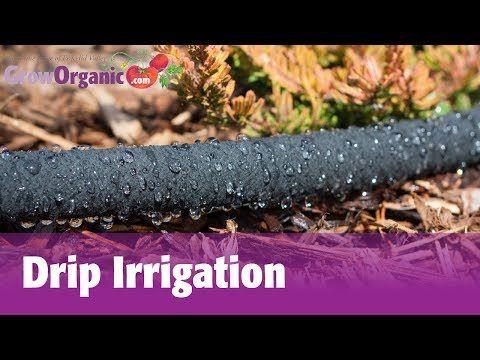 "GrowOrganic.com Total CV 1/2"" Emitterline (100 ft roll) - Emitterline - Drip Irrigation - Irrigation"