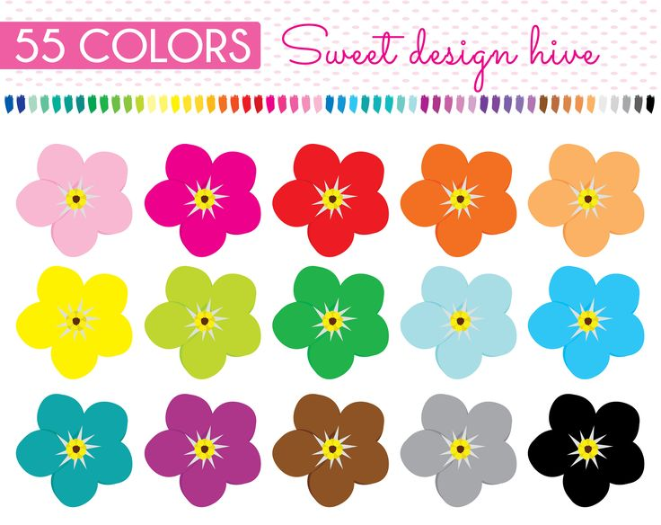 FLOWER Forget me not clipart, flower clipart, Forget me not clipart, Rainbow Flowers Clip art, Planner Stickers, Commercial Use, PL0129 by Sweetdesignhive on Etsy