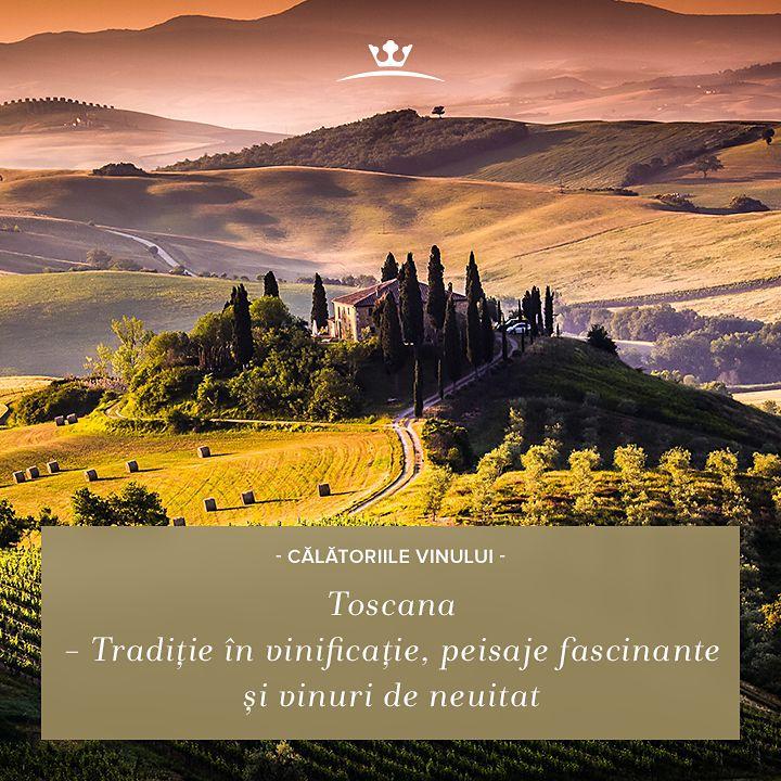 Toscana te întâmpină cu peisaje extraordinare și vinuri de poveste. Pe lângă soiul local Sangiovese, foarte răspândit în regiune, în Toscana poți savura Cabernet Sauvignon, Pinot Noir, Merlot, Chardonnay sau Syrah.