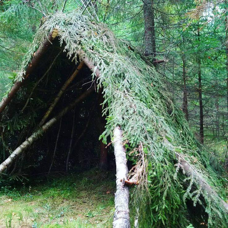 построить дом в лесу своими руками фото торжественный день
